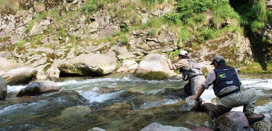 Pesca alla mosca